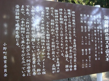 福島夏井 08 021.jpg